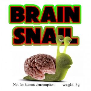 Raeuchermischung brainsnail